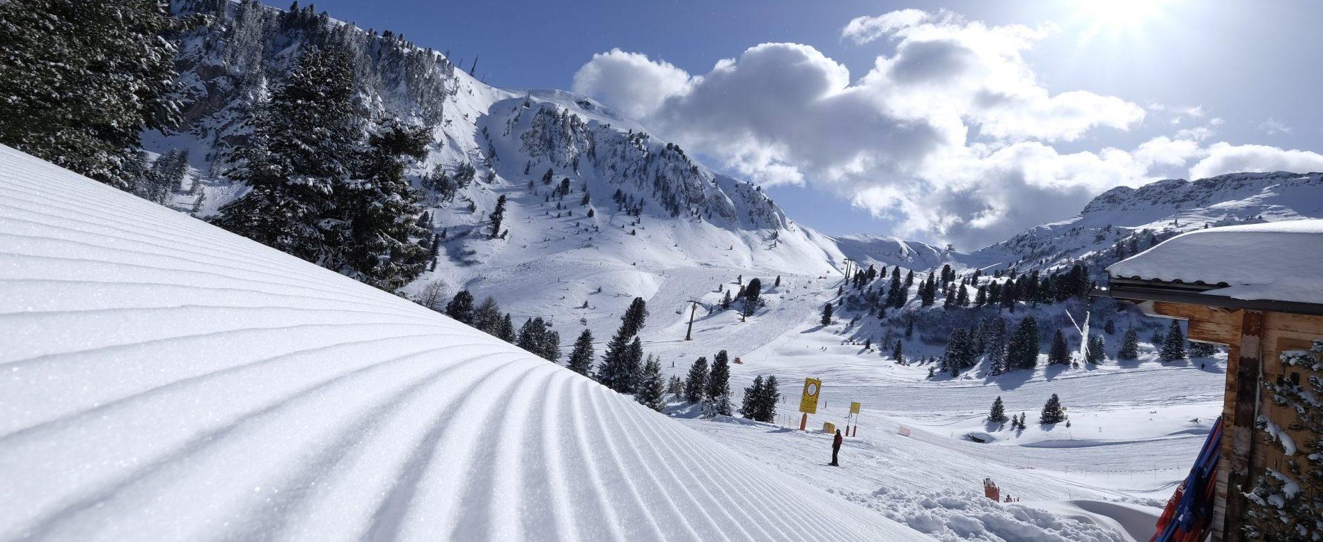 Ski and winter sports